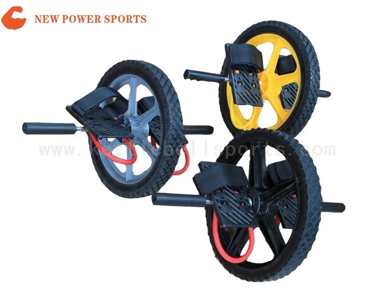 NP1700101 Gym Wheel